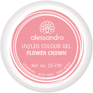 Colour Gel Hello Beautiful Flower Crown 5 g