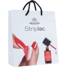Promotion Carrier Bag Small