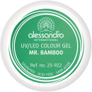 Colour Gel 922 Mr. Bamboo