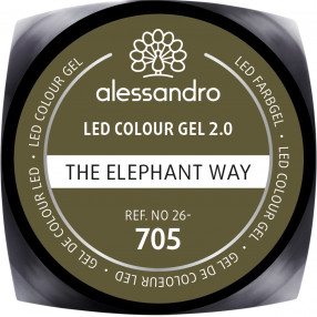 New Colour Gel Wild Africa the ELEPHANT way 5 gr