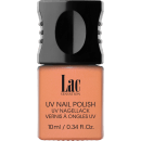 10 Nude Brown