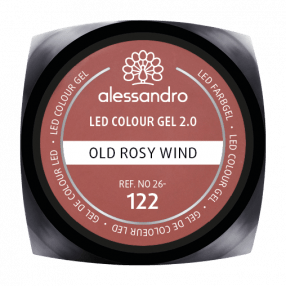 Colour Gel Old Rosy Wind 5g
